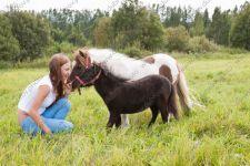 Летняя фотосессия с лошадьми, пони и козой