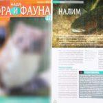 """Пример использования изображения из микростока в журнале """"Флора и фауна"""""""