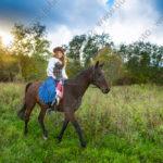 Фотосессия с конем на закате